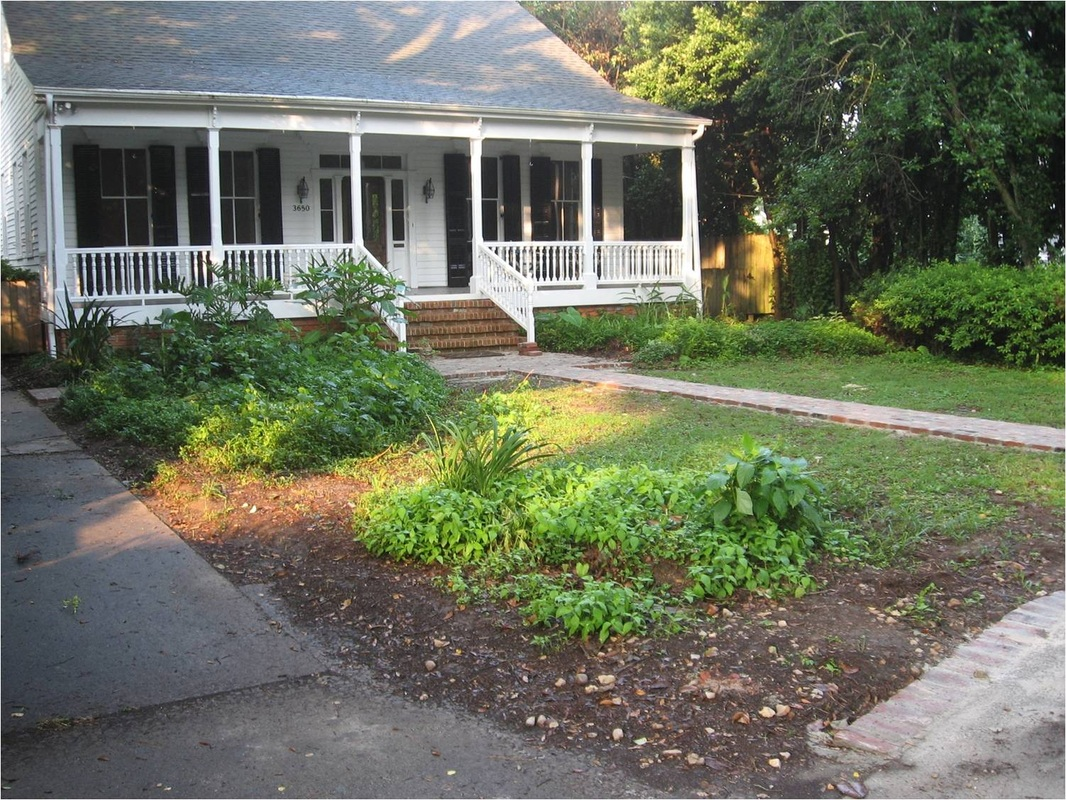 landscape cleanup baton rouge louisiana
