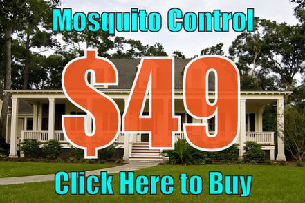 mosquito control special