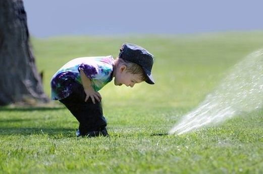 Picture of sprinkler startup special